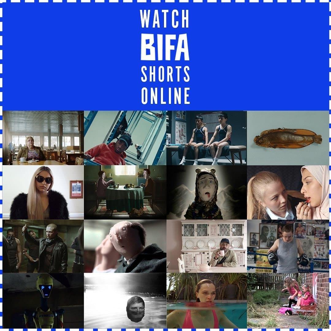 BIFA выложила в сеть лучшие за 10 лет короткометражки