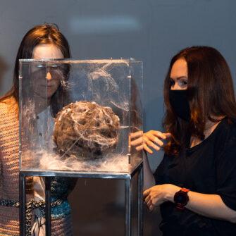 Выставка «Искусство иестественные науки— 2021» class=