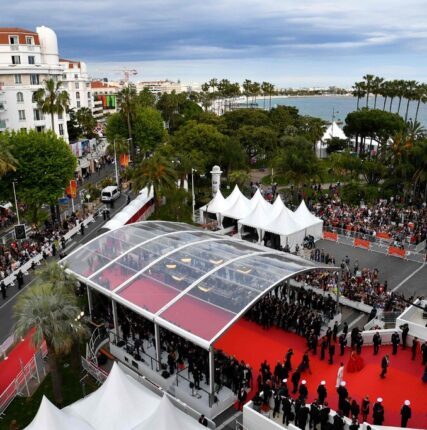 Гаспар Ноэ, Дарио Ардженто, Билл Мюррей: программу Каннского кинофестиваля дополнили 9 фильмами