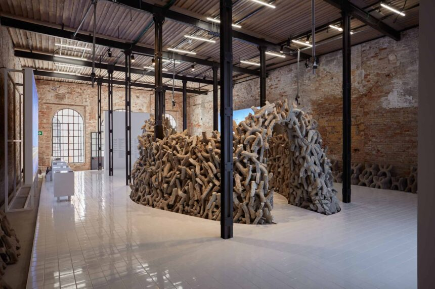 Жюри Венецианской архитектурной биеннале вручило награды победителям