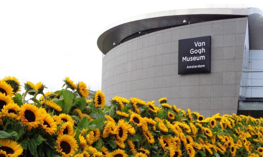 На Музей Ван Гога подали в суд за отказ признать картину подлинником